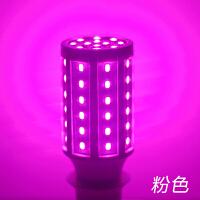 粉红紫色灯泡led彩色卧室情调氛围浪漫夜光灯螺口美颜补光小夜灯 【E27大螺口】粉光灯 高亮节能色彩纯正
