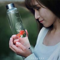 天喜 360ML密封水杯 耐热玻璃水瓶 创意车载杯 玻璃杯 矿泉水瓶 茶杯