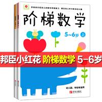 好宝宝阶梯潜能开发5~6岁2册 图书小红花阶梯数学幼儿数学启蒙书 趣味全脑思维升级训练教材右脑左脑开发书儿童智力开发书