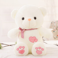 抱抱熊公仔毛绒玩具女生可爱搞怪玩偶泰迪熊送女友布娃娃