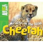 【预订】Cheetah Y9780753467251