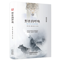 野性的呼唤 精装杰克.伦敦著中文版世界经典文学名著10-15岁中小学生课外阅读书籍儿童读物