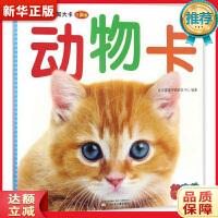 0~3岁认知大卡――动物卡 北京婴童早教研发中心 辽宁少年儿童出版社 9787531571247 新华正版 全国85%