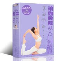 瑜伽书籍教程大全 从入门到精通零基础减肥美容全彩动作分解图健