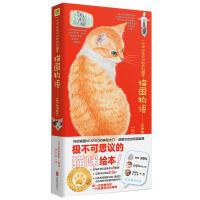 猫国物语(十周年纪念珍藏版)徐静蕾撰文《猫咪天使》倾情盛赞!