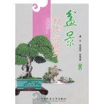 盆景制作与欣赏(全彩)