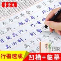 章紫光可重复书写 6本装 成人行书练字帖