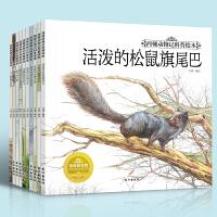 西顿动物记科普绘本全10册 3-6-7-8-9-12岁小学生一二三四年级课外阅读少儿童十万个为什么昆虫记百科读物书籍正