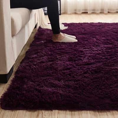 客厅沙发地毯茶几垫房间可爱地毯阳台卧室床边满铺地垫可机洗