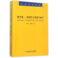 【正版现货】数学桥―用图形计算器学数学 林风,黄炳锋 9787560352992 哈尔滨工业大学出版社