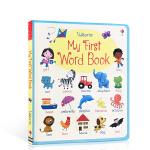 顺丰发货 英文原版 My First Word book 宝宝认字初级启蒙儿童英语单词纸板书 2-6岁 Felicit