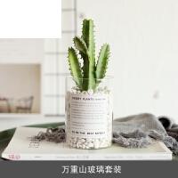 家居摆件装饰 仙人掌 植物北欧盆栽 仿真多肉绿植