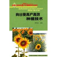 【新书店正版】向日葵高产高效种植技术贾利欣9787204126156内蒙古人民出版社