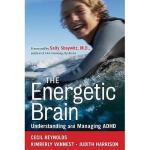 【预订】The Energetic Brain: Understanding And Managing