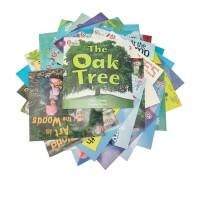 【级别2 红色套装AB】Collins Big Cat 柯林斯大猫英语分级阅读二级 Sbt Big Cat Set Red AB 44册全套 附赠2原版CD 英文原版故事绘本