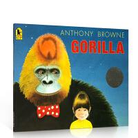 【全店300减110】英文原版绘本 Gorilla 大猩猩 荣获凯特格林纳威奖 Anthony Browne 安东尼布朗