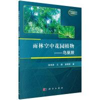 雨林空中花园植物――鸟巢蕨