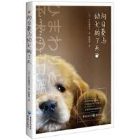 向日葵与幼犬的7天 [日]平松惠美子 9787229131807 重庆出版社