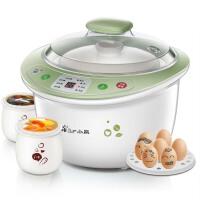 全自动预约白瓷BB煮粥煲汤电炖盅隔水电炖锅 浅绿色