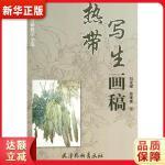 热带写生画稿(8K) 刘龙耀/安维奎 暂无9787554702246【新华书店 品质保障】