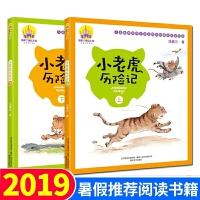 小老虎历险记 注音美绘版 上下全2册 汤素兰系列儿童书 手绘全彩一年级 6-8-12岁一二年级小学生课外读物 经典中国