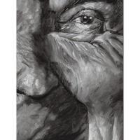 【预订】Jim Shaw: Distorted Faces & Portraits, 1978-2007