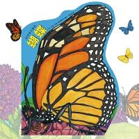 正版全新 3D全景立体书:蝴蝶