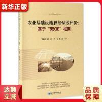 """农业基础设施供给绩效评价:基于""""双QE""""框架 曾福生,郭真,李飞,夏玉莲"""