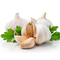 【包邮】金乡大蒜5斤(直径5.0-6cm)整头干蒜紫皮