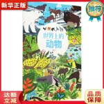 世界上的动物 杜菲,小萌童书出品,有容书邦 发行 海豚出版社9787511017161【新华书店 品质保障】