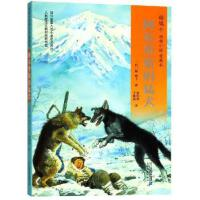 【全新直发】阿尔卑斯的猛犬/椋鸠十动物小说爱藏本04 二十一世纪出版社集团有限公司