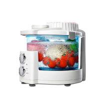 家用全自动洗菜机果蔬消毒机清洗机水果蔬菜解毒机臭氧机