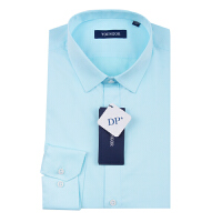 Youngor/雅戈尔新款男商务正装蓝色棉免烫长袖衬衫DP12232HFY/GFY