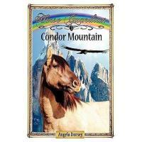 【预订】Condor Mountain