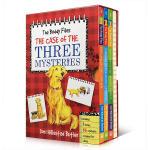 英文原版绘本 The Buddy Files Boxed Set #1-3 好友档案系列 章节桥梁书 儿童解谜故事书