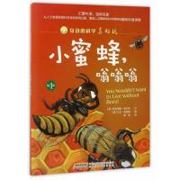 【正版图书-ML】--身边的科学真好玩(第4辑)小蜜蜂,嗡嗡嗡(儿童读物)9787533771430知礼图书专营店