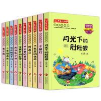 10册正版 兔子坡月光下的肚肚狼小桔灯书本里的蚂蚁 注音版小学生课外阅读英书籍6-12周岁故事书儿童一年级课外书二三年