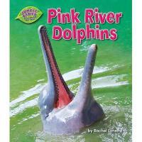 【预订】Pink River Dolphins