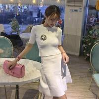 春夏新款修身百搭短袖上衣+学院风高腰A字短裙套装配胸花