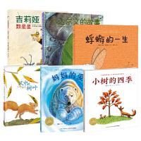 正版全新 海豚绘本花园:小小自然科学家系列(吉莉娅数星星+小达尔文的故事+风中的树叶+妈妈的爱+蜉蝣的一生+小树的四季