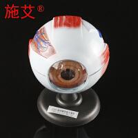 眼球解剖模型6倍大7件套人体眼睛模型眼珠内部可拆卸放大模型生物医疗教具器材生物教学仪器器材