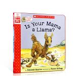 英文原版绘本 Is Your Mama a Llama? 你妈妈是羊驼吗? 廖彩杏推荐书单 温馨母爱睡前故事图文纸版书