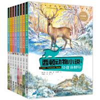 西顿动物小说(8册彩绘版)