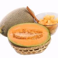 【包�]】山�|海�蜜瓜�W�y哈密瓜2���b4.5-5斤 新�r水果