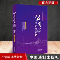 公司法实战智慧(二) 中国法制出版社