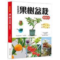 果树盆栽 大森直树 中原农民出版社 9787554217665