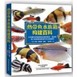 热带鱼水族箱构建百科
