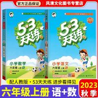 2020春53天天练六年级下册人教版部编版语文数学2本小学教辅教材同步作业练习册