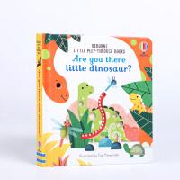 小恐龙,你在吗? Are You There Little Dinosaur?英文原版洞洞书 3-5岁宝宝低幼启蒙宝宝撕