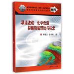 稠油波动-化学低温裂解降黏理论与技术 浦春生,王步娥 石油工业出版社 9787518303212